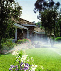 Sprinklers on lawn with flowers in the foreground